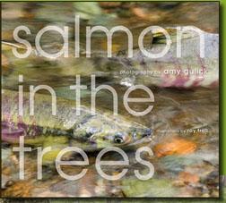 SalmonInTheTrees